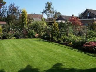 _groene tuin